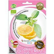 "Sobre Semilla ECO Albahaca ""Citron"" - 04082104 (1)"